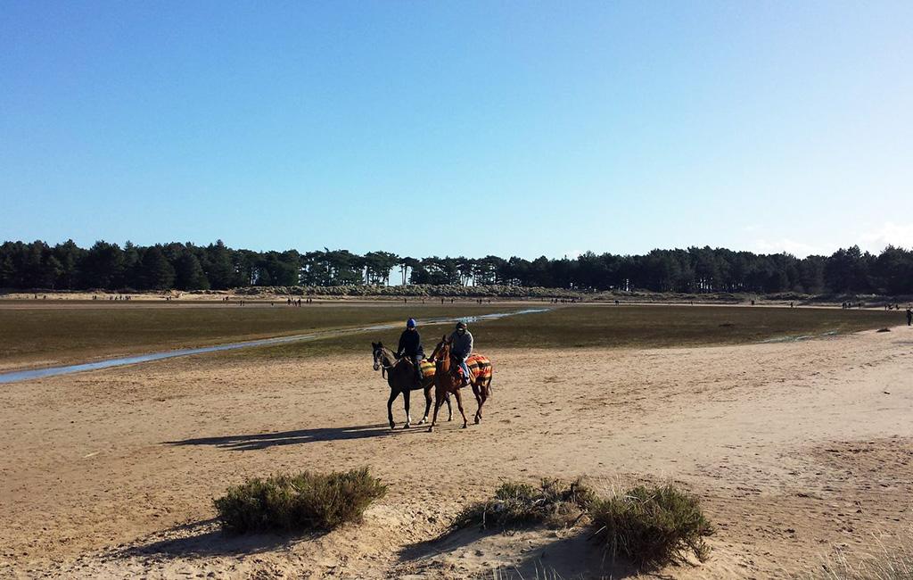 Horse riding on Holkham Beach.